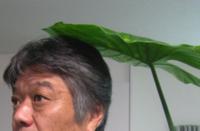 hirabayashi_pro.pngのサムネール画像