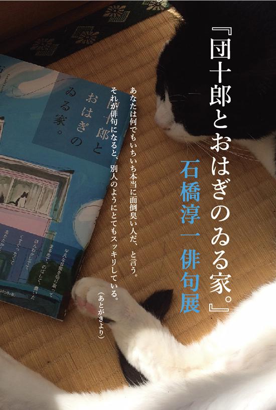 dm_danoha.jpg