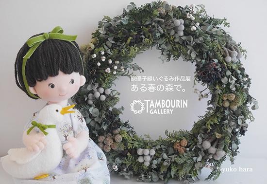 dm_harayuko_arumoride.jpg